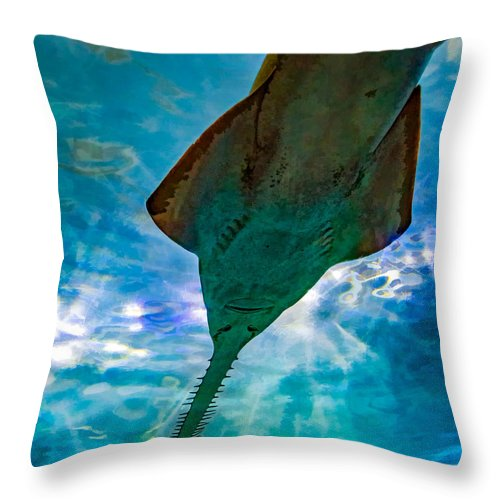 Steve Harrington Throw Pillow featuring the photograph Sawfish by Steve Harrington