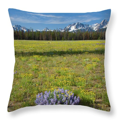 Wildflowers Throw Pillow featuring the photograph Sawtooths And Wildflowers by Idaho Scenic Images Linda Lantzy