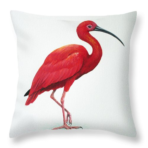 Scarlet Ibis Throw Pillow featuring the painting Scarlet Ibis by Christopher Cox
