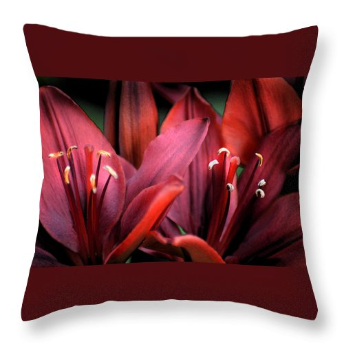 Scarlet Throw Pillow featuring the photograph Scarlet Lilies by Kathleen Stephens