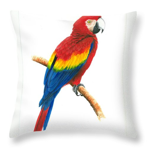 Chris Cox Throw Pillow featuring the painting Scarlet Macaw by Christopher Cox