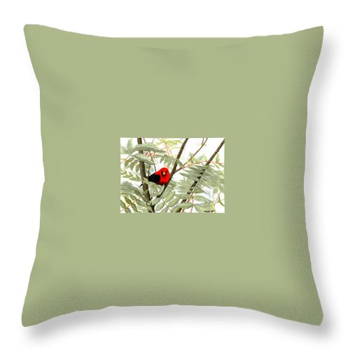 Bird Throw Pillow featuring the painting Scarlet Tanager by Mary Tuomi