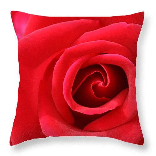 Rose Throw Pillow featuring the photograph Scarlet Vortex by David Dunham