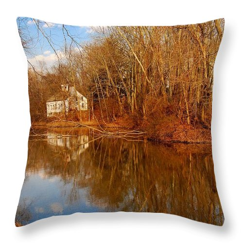 New Jersey Throw Pillow featuring the photograph Scene In The Forest - Allaire State Park by Angie Tirado