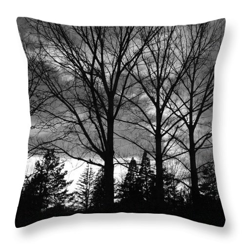 Black And White Throw Pillow featuring the photograph Scenic State Capital by Rob Hans