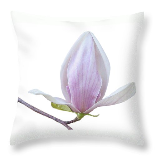 White Throw Pillow featuring the photograph Scent Of A Magnolia by Christine Till