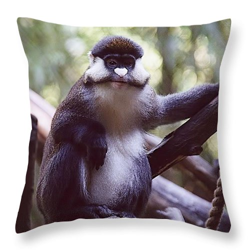 Animals Throw Pillow featuring the photograph Schmidts Guenon by Jan Amiss Photography