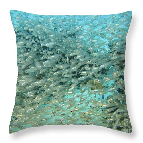Coral Throw Pillow featuring the photograph School Of Fish At Kwajalein Atoll by Dan Norton