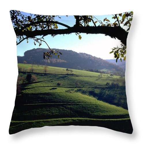 Schwarzwald Throw Pillow featuring the photograph Schwarzwald by Flavia Westerwelle