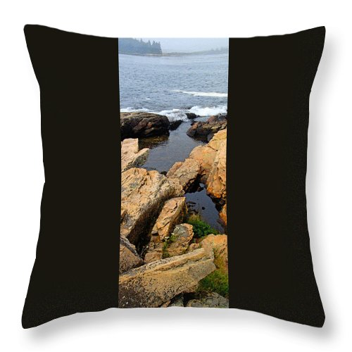 Landscape Throw Pillow featuring the photograph Scoodic Tidepool by Peter Muzyka
