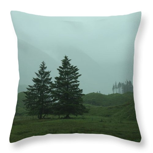 Nature Throw Pillow featuring the photograph Scottland by Lisa Spero