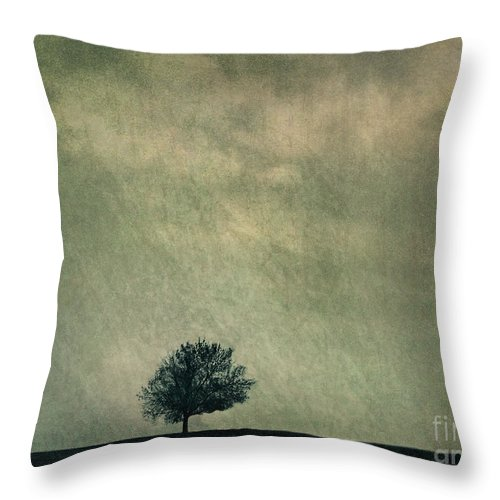 Blue Throw Pillow featuring the photograph Screaming At The Top Of My Voice by Dana DiPasquale