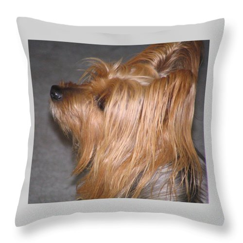 Dogs Throw Pillow featuring the photograph Scruffy by Peggy Holcroft