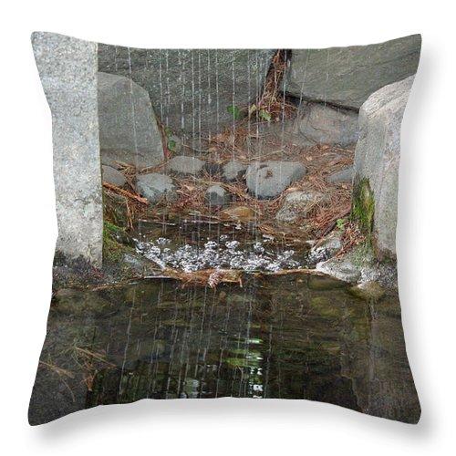 Sculpture Garden Throw Pillow featuring the photograph Sculpture Garden II by Suzanne Gaff