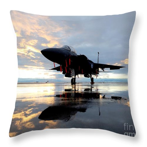 Sea Hawk Throw Pillow featuring the painting Sea Hawk by Celestial Images