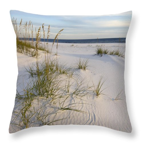 Fl Throw Pillow featuring the photograph Sea Oats And Blue Sky by Bill Chambers