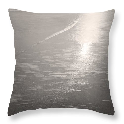 Sea Throw Pillow featuring the photograph Sea Plains by Gary Bartoloni