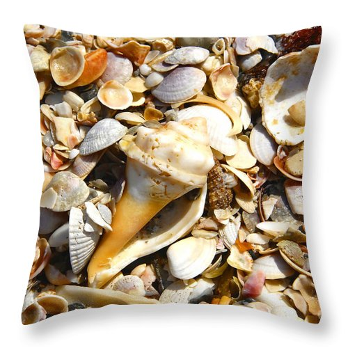 Florida Throw Pillow featuring the photograph Sea Shells by David Lee Thompson