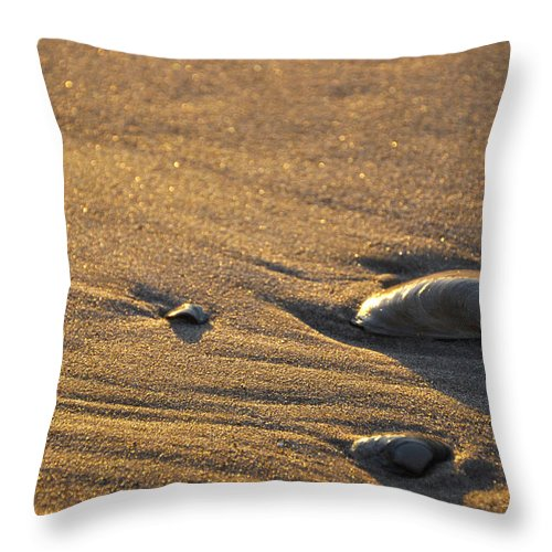 Sea Shells Throw Pillow featuring the photograph Sea Shells by Denise Laurin