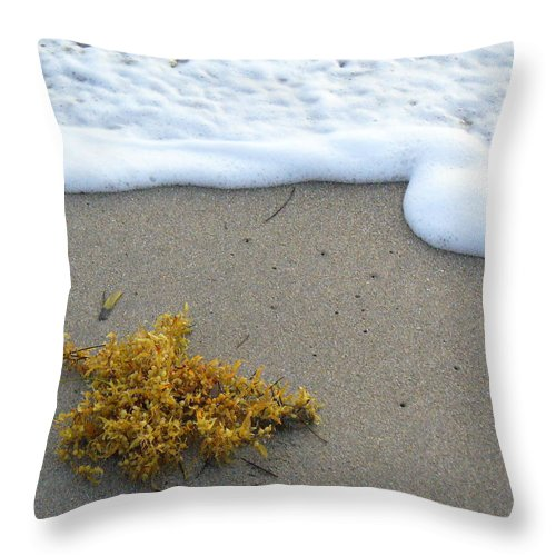 Foam Throw Pillow featuring the photograph Seafoam And Seaweed by Peggy King