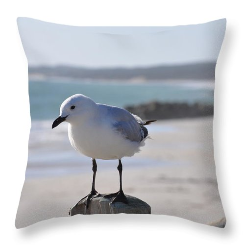 Seagull Throw Pillow featuring the painting Seagull by Richard Benson