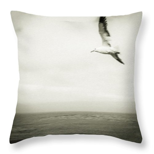 Seagull Throw Pillow featuring the photograph Seagull by Steve Spiliotopoulos