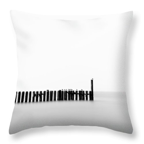 Groynes Throw Pillow featuring the photograph Seagulls And Groynes by Dave Bowman