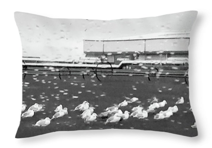 Seagulls Throw Pillow featuring the photograph Seagulls In The Rain by Linda Bickerton-Ross