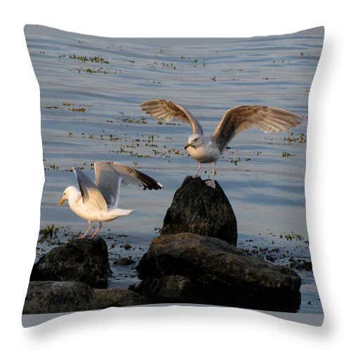 Birds Throw Pillow featuring the photograph Seaguls 3 by Cristina Rettegi