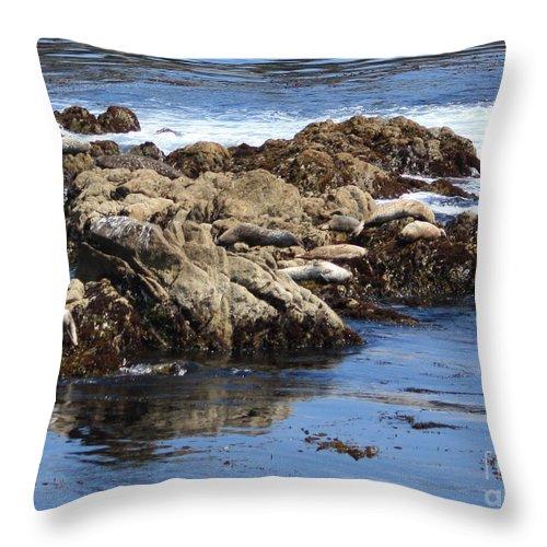 California Coast Throw Pillow featuring the photograph Seal Island by Carol Groenen