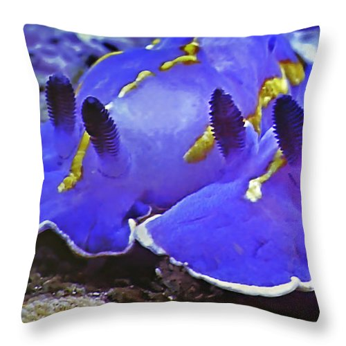 Ocean Throw Pillow featuring the photograph Sealife Underwater Snails by Christine Till