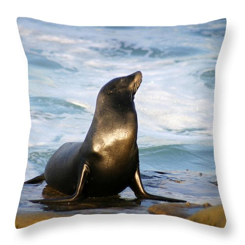 Sealion Throw Pillow featuring the photograph Sealion by Anthony Jones
