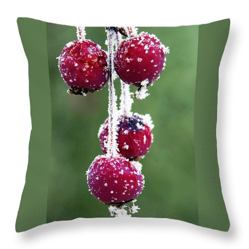 Berries Throw Pillow featuring the photograph Seasonal Colors by Marilyn Hunt