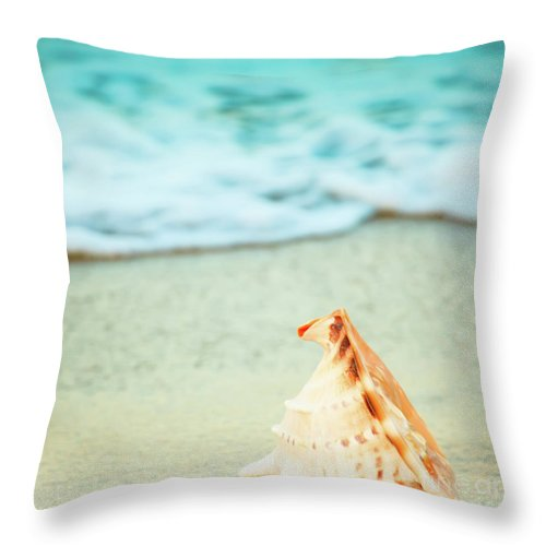 Seashell Throw Pillow featuring the photograph Seashell by MotHaiBaPhoto Prints