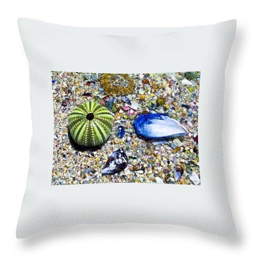 Seashore Throw Pillow featuring the photograph Seashore Colors by Douglas Barnett