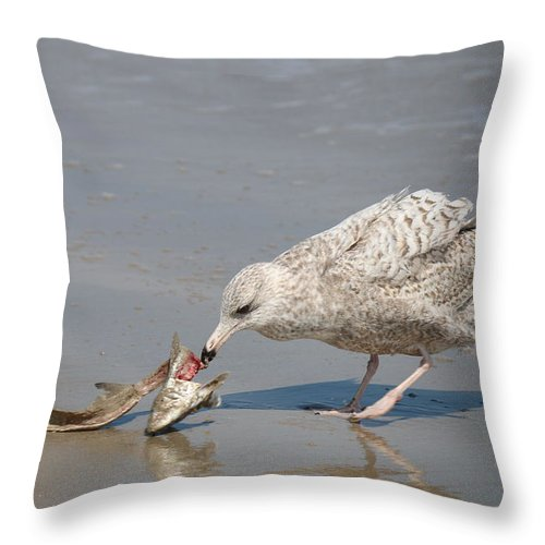 Sea Throw Pillow featuring the photograph Seaside Snack - 4 by Christy Pooschke
