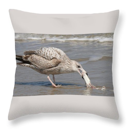 Sea Throw Pillow featuring the photograph Seaside Snack by Christy Pooschke