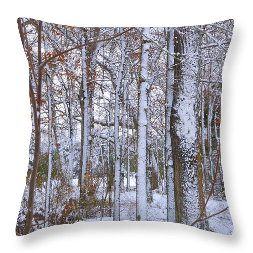 Fine Art Throw Pillow featuring the photograph Season's First Snow by Gerlinde Keating - Galleria GK Keating Associates Inc