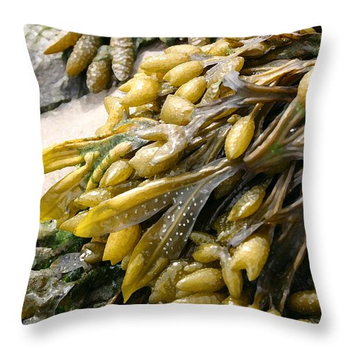 Seascape Throw Pillow featuring the photograph Seaweed by Mary Haber