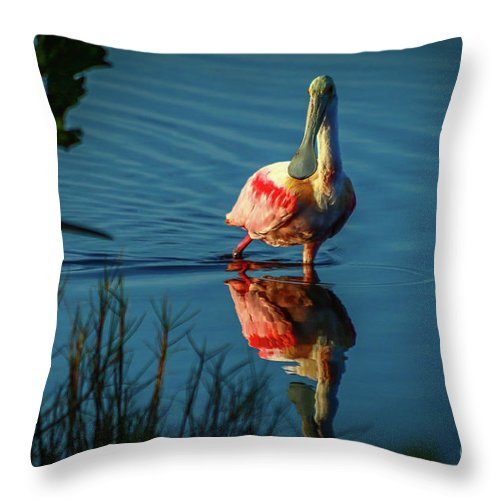Spoonbill Throw Pillow featuring the photograph Secret Admirer by Tom Claud