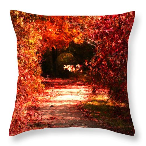 Tunnel Throw Pillow featuring the photograph Secrets by Cathy Beharriell