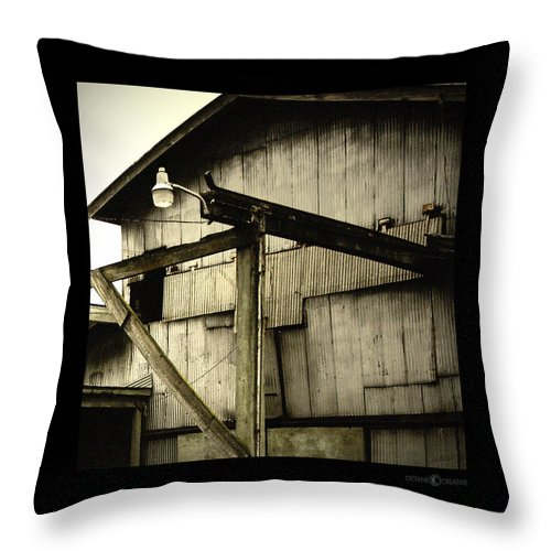 Corrugated Throw Pillow featuring the photograph Security Light by Tim Nyberg
