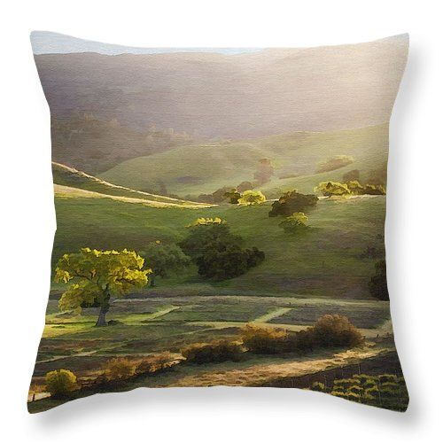 Landscape Throw Pillow featuring the photograph Sedgwick Sunrise by Sharon Foster