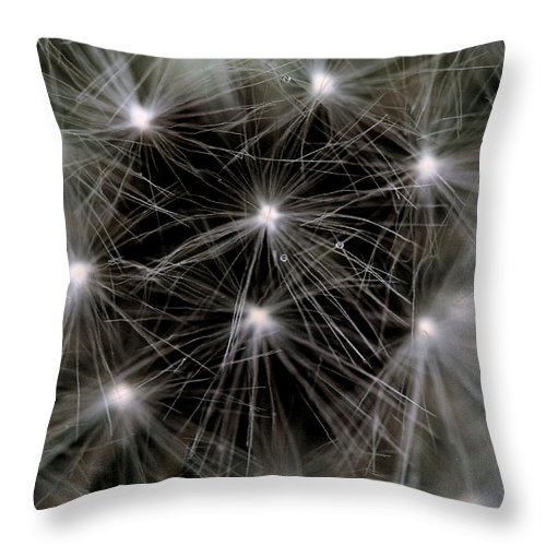 Dandelion Throw Pillow featuring the photograph Seedy by Angela Rath