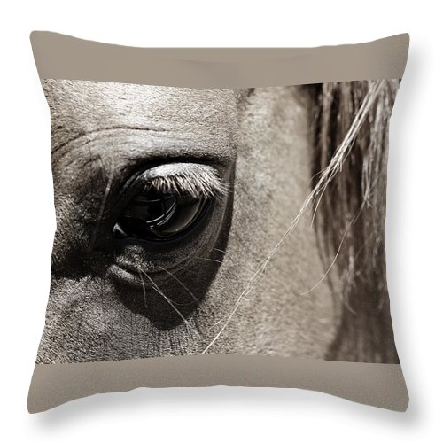 Americana Throw Pillow featuring the photograph Stillness In The Eye Of A Horse by Marilyn Hunt