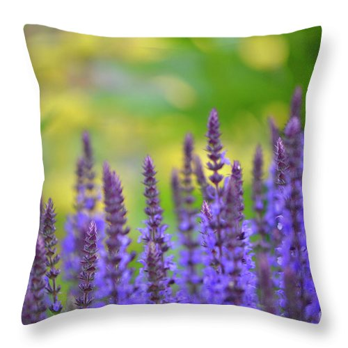 Purple Throw Pillow featuring the photograph Seeing Purple by Traci Cottingham