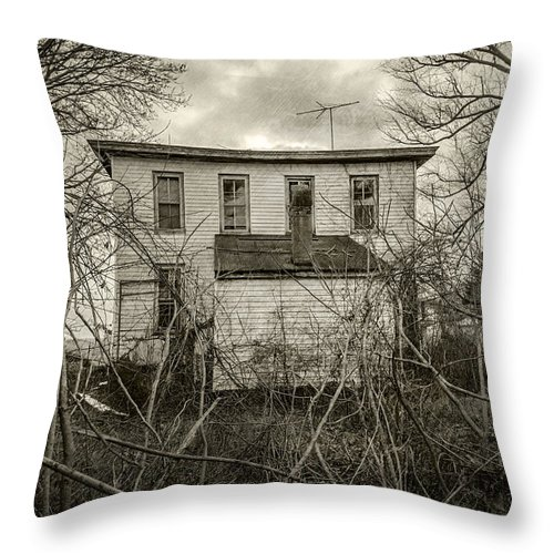 2d Throw Pillow featuring the photograph Seen Better Days by Brian Wallace