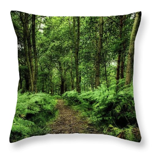 Nature Throw Pillow featuring the photograph Seeswood, Nuneaton by John Edwards
