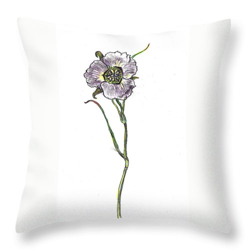 Floral Throw Pillow featuring the drawing Sego Lily Field Sketch by Dawn Senior-Trask
