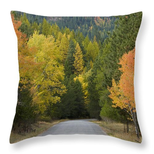 Trees Throw Pillow featuring the photograph Selkirk Color by Idaho Scenic Images Linda Lantzy